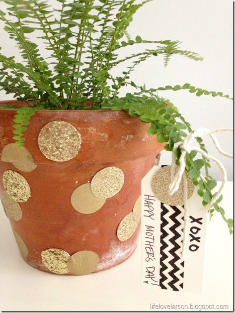 polka dot pot 2