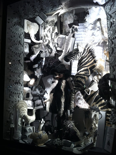 This black and white window featured zebras of course, but also had an array of furs, feathers, and other textures to give it dimension.