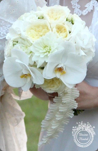 554069_156372291173944_194370880_n divine floreal