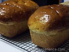 sprouted-einkorn-bread 025