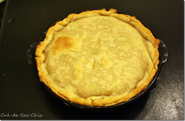 chicken pot pie 013