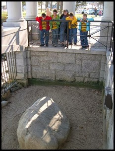 plymouth_rock