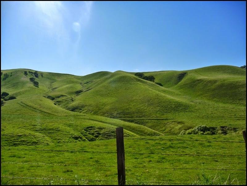 Antioch Green Hills Springtime 023 (800x600)