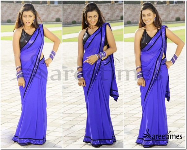 Blue_Saree