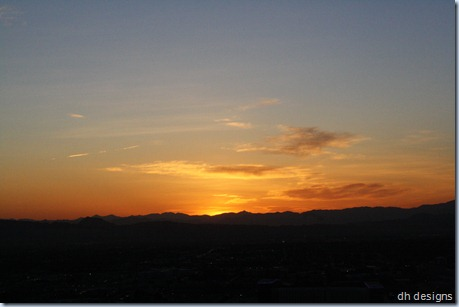 Las Vegas 2011 365