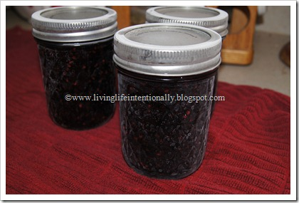 Preserving Homemade Jam