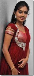 actress_divya_padmini