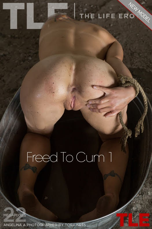 [Thelifeerotic] Angelina A - Freed To Cum