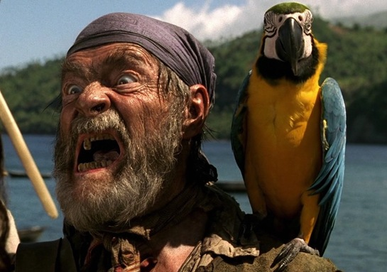 Pirate Cotton's Parrot