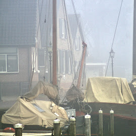 A foggy morning in the harbor 7 by Anita Berghoef - Transportation Boats ( port, reflection, foggy, harbor, fog, boats, transportation, boat, mist )