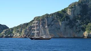 Spirit of New Zealand bei Riko Riko seacave.