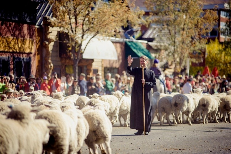 trailing-of-the-sheep-11