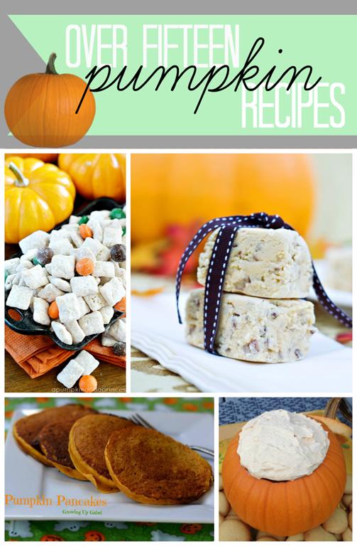 Over 15 Pumpkin Recipes at #gingersnapcrafts #pumpkins #recipe #features #fall