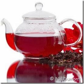 chá de hibisco 03