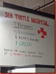 Hospital Info