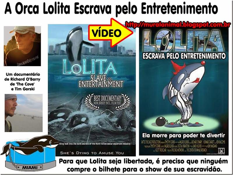 orca_lolita