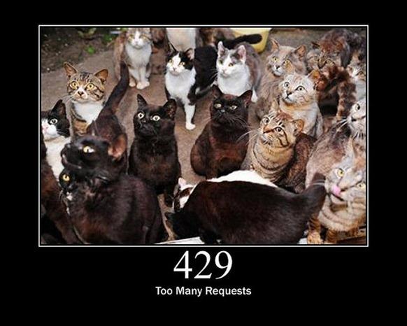 HTTP-Status-Cats-20