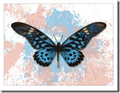 blue notecard thumbnail