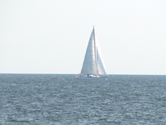 Provincetown beach w sailboat.8.16.2012