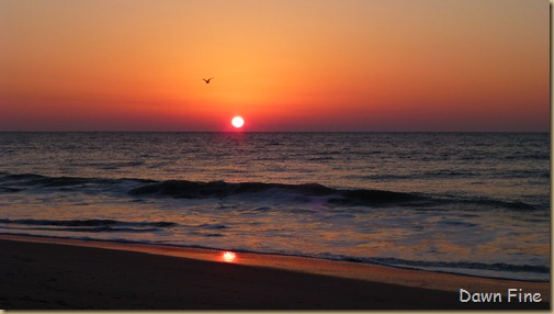 sunrise walk edisto_027
