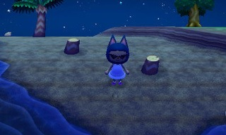 animal crossing new leaf beetle catch guide 03