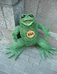 Рижская лягушка