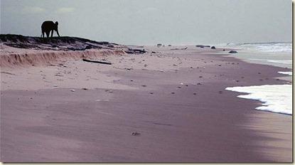 Las Mejores Playas mas Raras del Mundo
