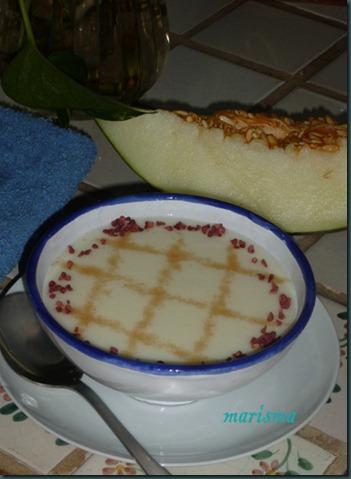 sopa fría de melón copia