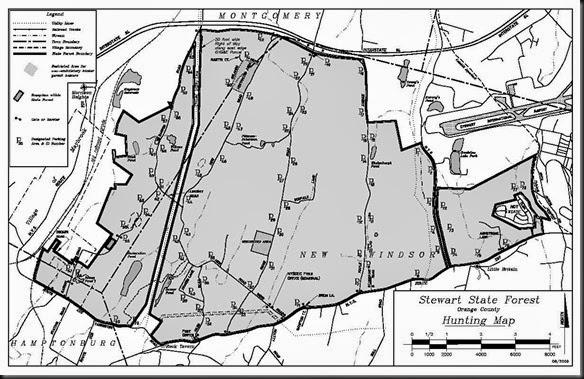 Stewart Forest Map