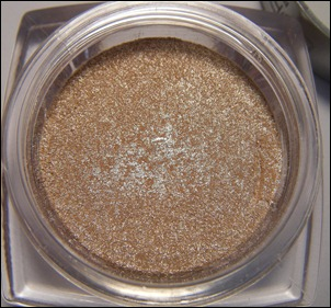 L'Oreal Iced Latte Infallible Eye Shadow