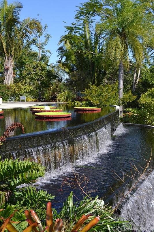 My Paisley World Naples Fl Naples Botanical Garden