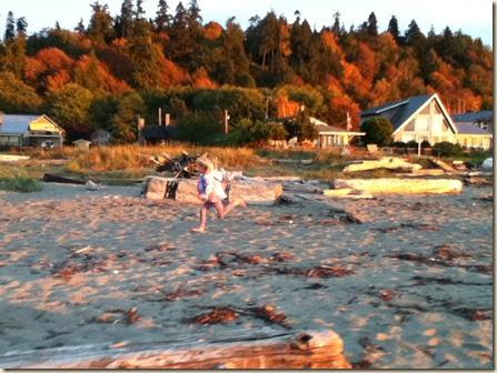 Maxwelton beach 027