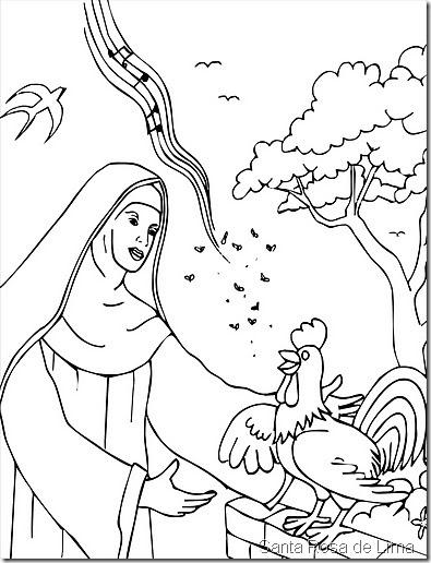 santa rosa15