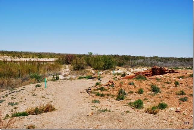 04-29-14 A Homolovi Ruins State Park (134)