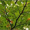 2012-baran-dorota-061.jpg