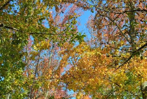 Glória Ishizaka - Outono 2013 - 59