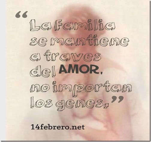 amor adopcion