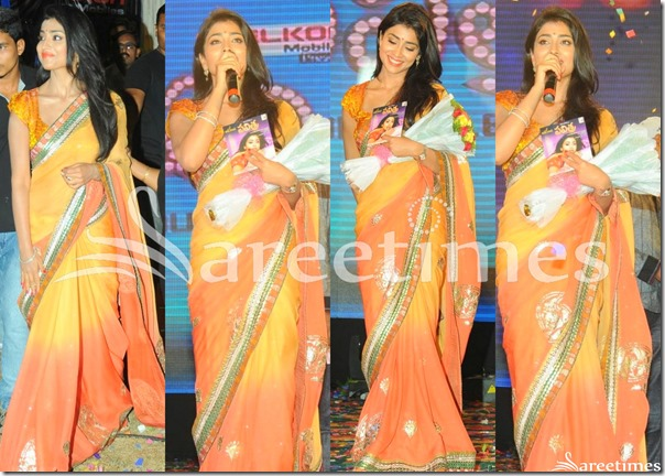 Shriya_Dual_Color_Saree