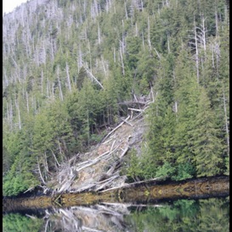 "Logbook: Gwaii Haanas - Ending with ""The Bad"" and ""The Ugly"""