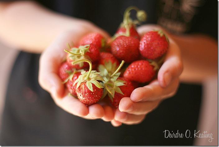 strawberrys SDOF
