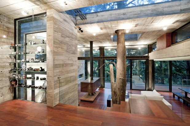 corallo house by paz arquitectura 4