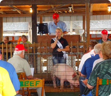 pig auction