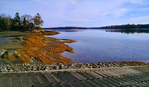 3. Mere Point Boat launch 11-13-14