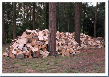 A huge pile of wood