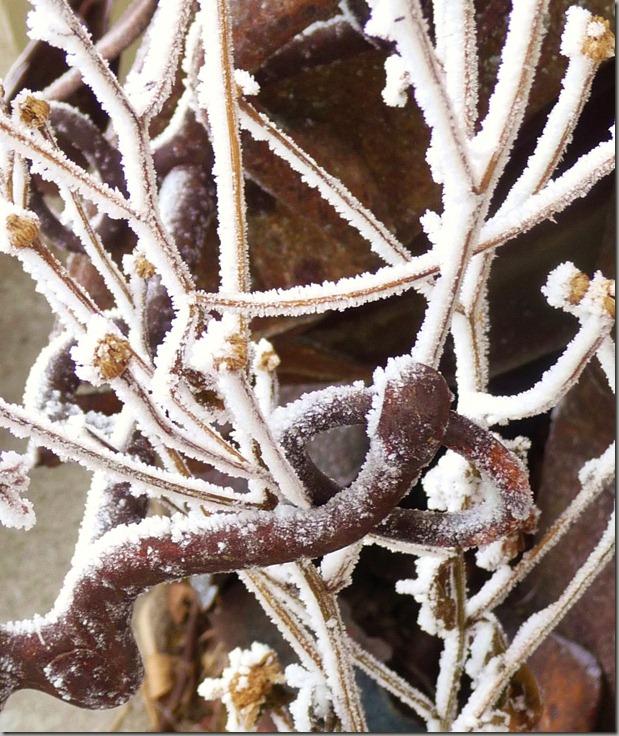 frosty 003
