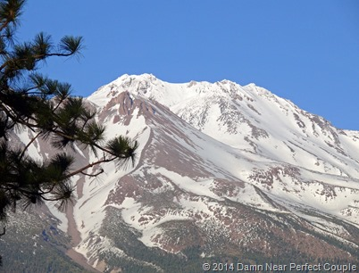 Shasta from RV Park