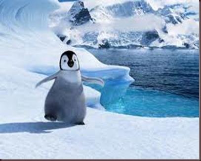 Amazing Pictures of Animals photo Nature exotic funny incredibel Zoo.Antartida (10)