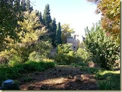20131127_044622  alcazaba (Small)