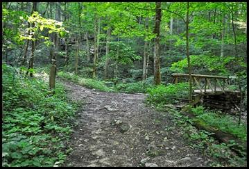 05 - Whittleton Arch Trail