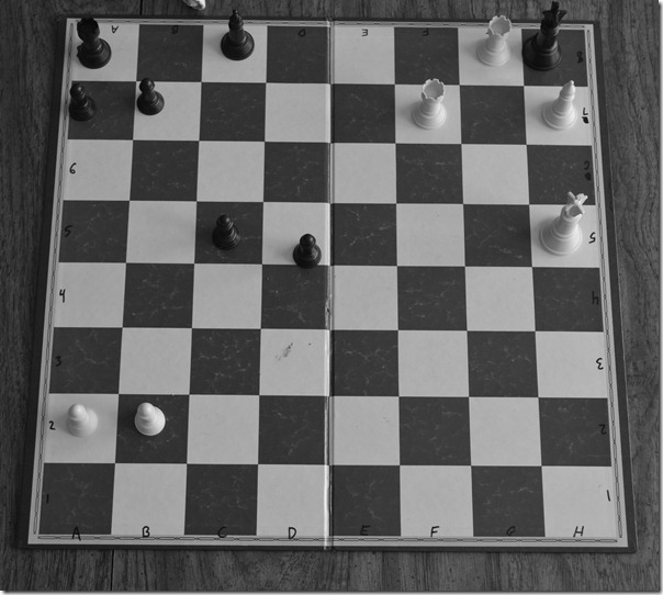 chess, week of Scout Camp 002